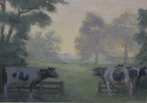 Kühe am Gatter