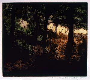 Autumn Eve, Lamorna