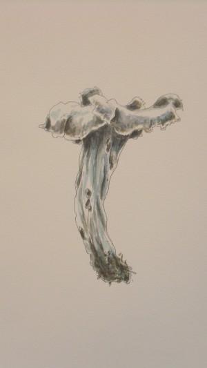 Günter Verheugen (Aus: Mushroom of the day, #0897)